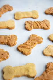 Coconut and Pumpkin Dog Treats